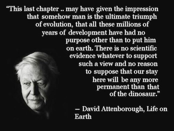 David Attenborough quote